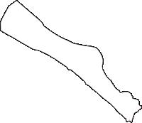 大阪府泉北郡忠岡町(ただおかちょう)の白地図無料ダウンロード